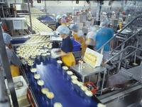 Canning factory production line